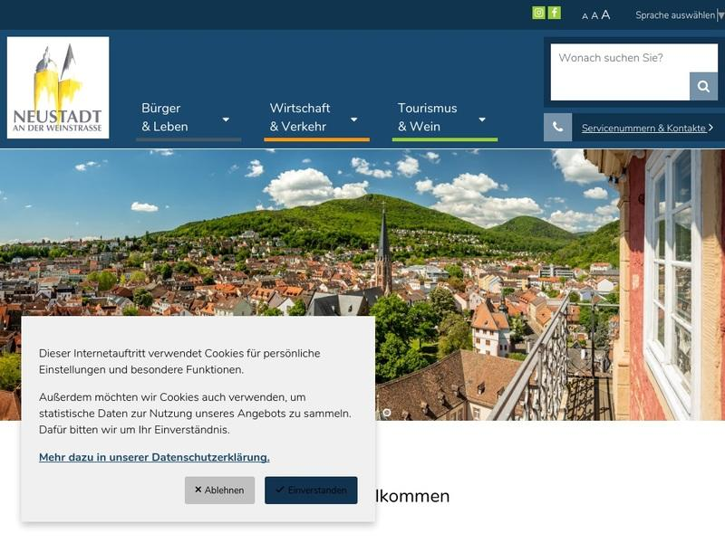 Screenshot von www.neustadt.eu